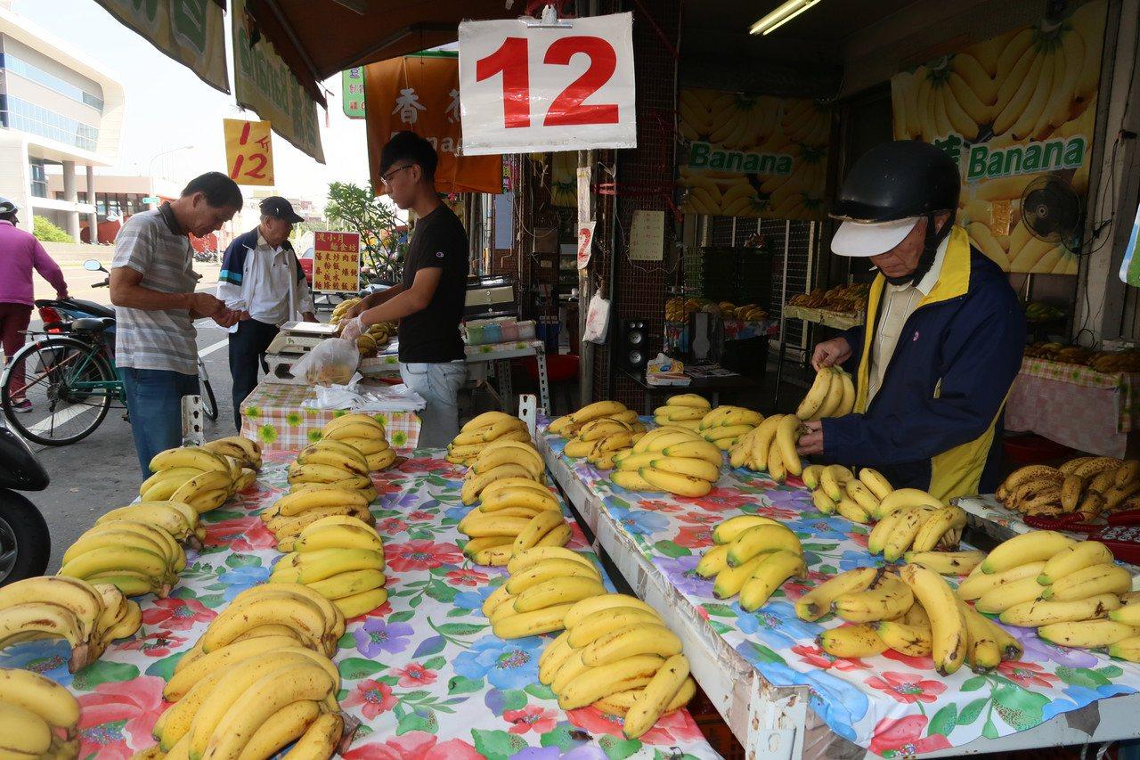 低迷許外的香蕉價格終於漲聲響起,今天零售價已回到一台斤12元。記者翁禎霞/攝影