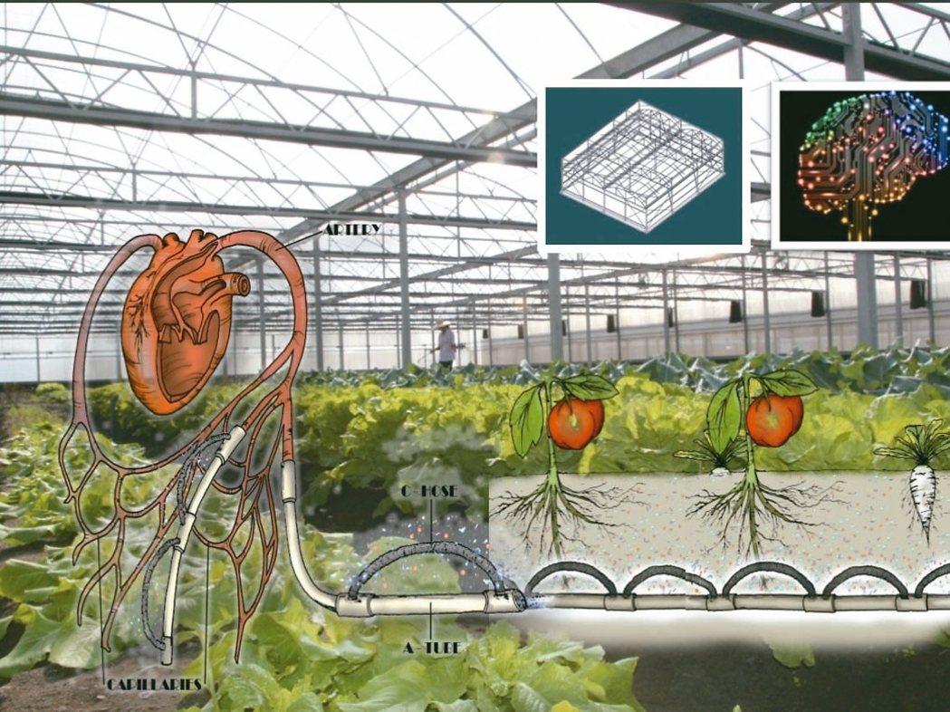 台灣蓋婭社會企業研發出全球唯一仿生地下灌溉系統,將作物灌溉比照人體血液輸送,建立...