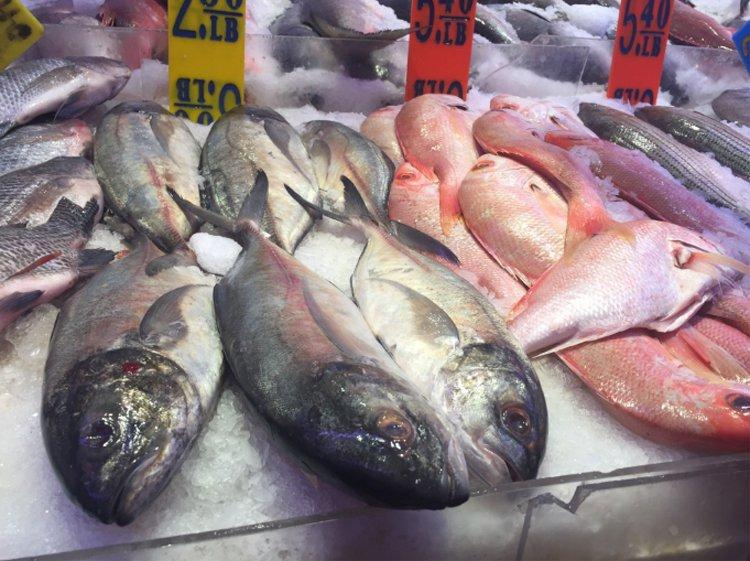 大型魚因生物累積,體內含有較多的重金屬,民眾平時最好少吃。 聯合報系資料照/記者...
