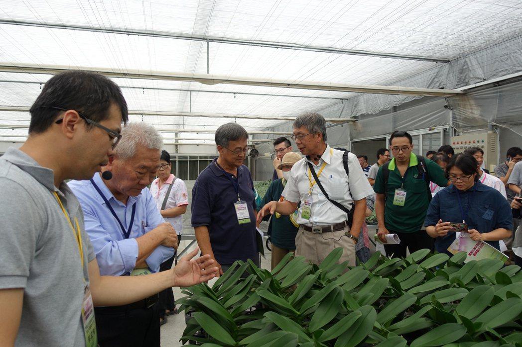 由行政院農業委員會指導、台灣經濟研究院主辦之農業業界科專「蝴蝶蘭苗新型介質、自動...