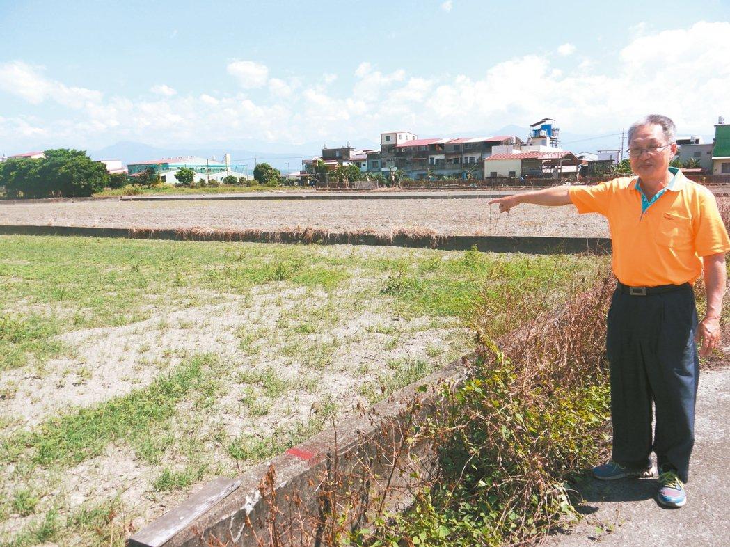 美濃農民說,此處三塊土地全被套繪管制,無法興建農舍,土地價值一落千丈。 記者徐白...