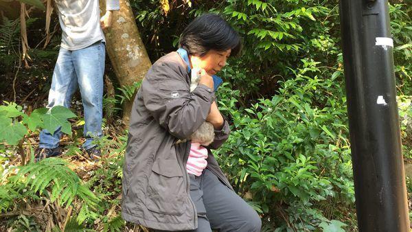 寶足姐偕同志工上山救援被棄養的流浪兔。 圖片來源:台灣流浪兔保護協會