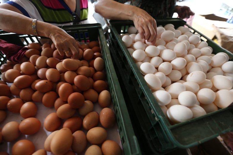 消費價格較高的動福蛋真的只是中產階級的自我感覺良好嗎?還是一種可以選擇的仁慈? ...