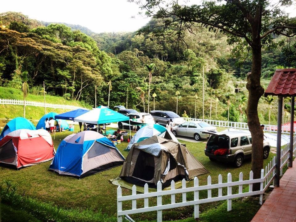 營區多為草皮營地,車子可以直接開入,十分方便。(圖片來源/飛螢農莊FB粉絲團)