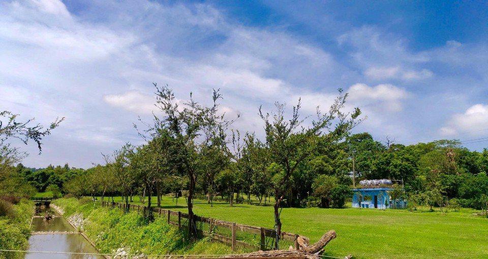 綠意盎然的草皮營地,維護得相當良好。(圖片來源/老官道休閒農場FB粉絲團)