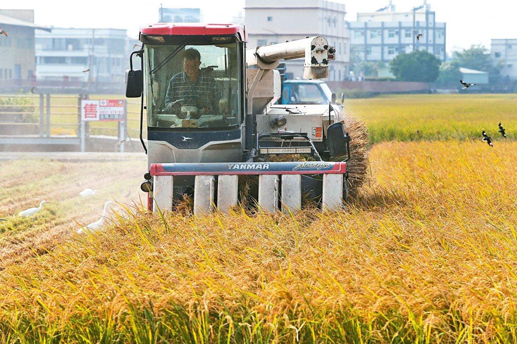 食藥署與農委會今天將重新展開農藥協商,食藥署提出,農藥延伸使用,須符合五個條件。...