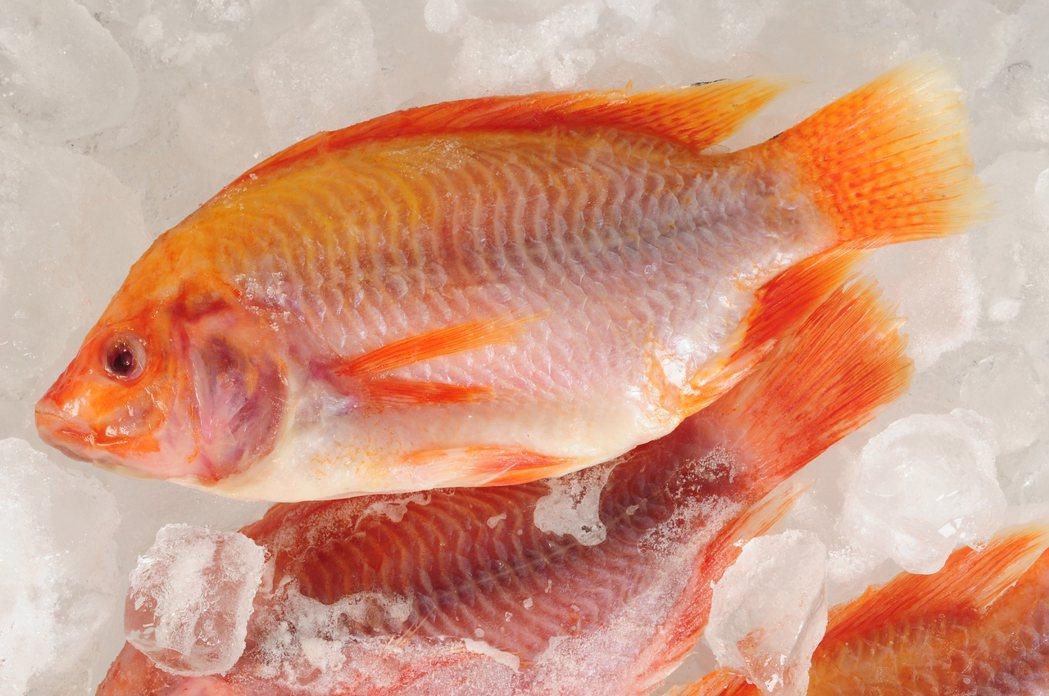 挪威研究發現,經過立即冷凍處理的魚,不但可以保存長達半年,其口感和營養價值都不輸...