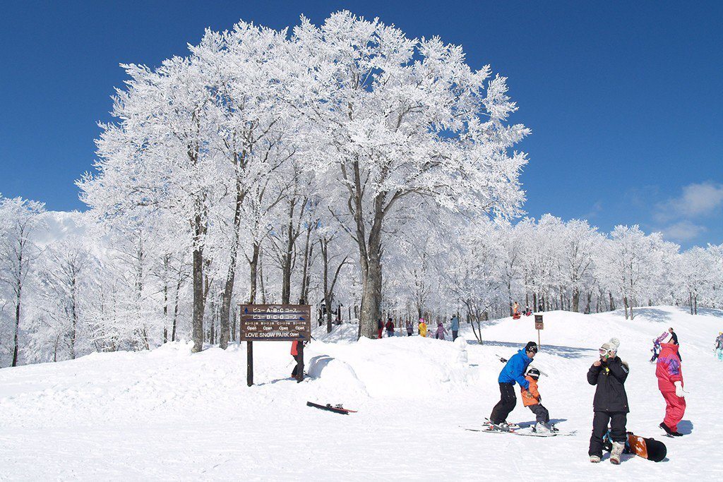 日本滑雪推薦-長野白馬村滑雪場|圖片來源:Tripbaa趣吧!達人帶路