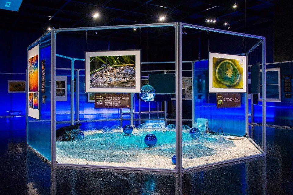 「科博館」內常舉辦各項科學主題展覽。(圖片來源/國立自然科學博物館FB粉絲團)