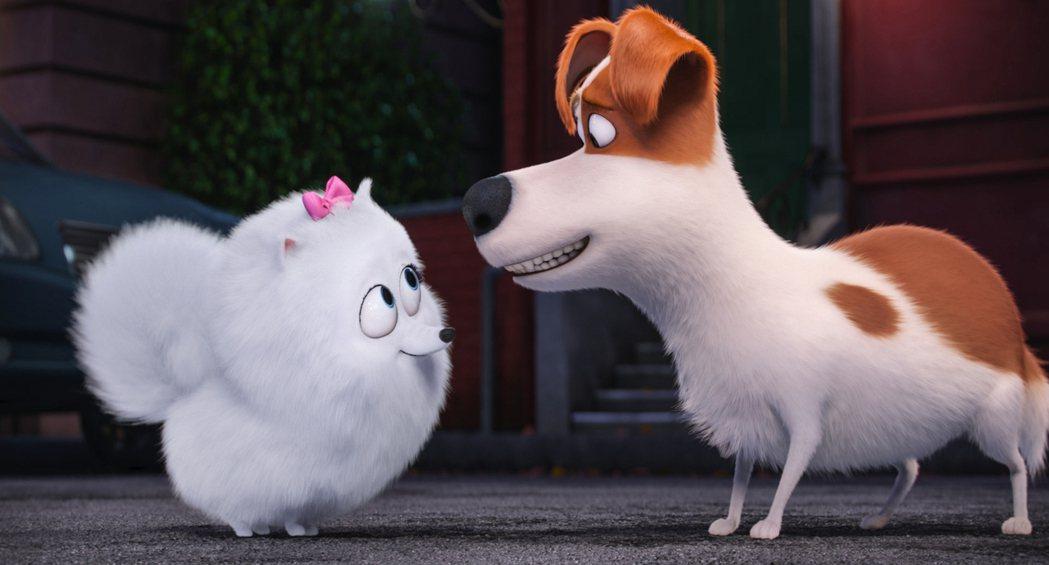「寵物當家」的續集有可能重新找人替小狗麥斯(右)配音,或是由新的狗狗當主角。圖/...