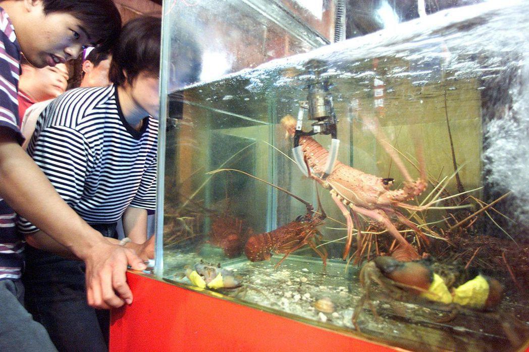 台北市饒河街夜市有夾娃娃機改為夾龍蝦機,娛樂變調。 本報資料照片