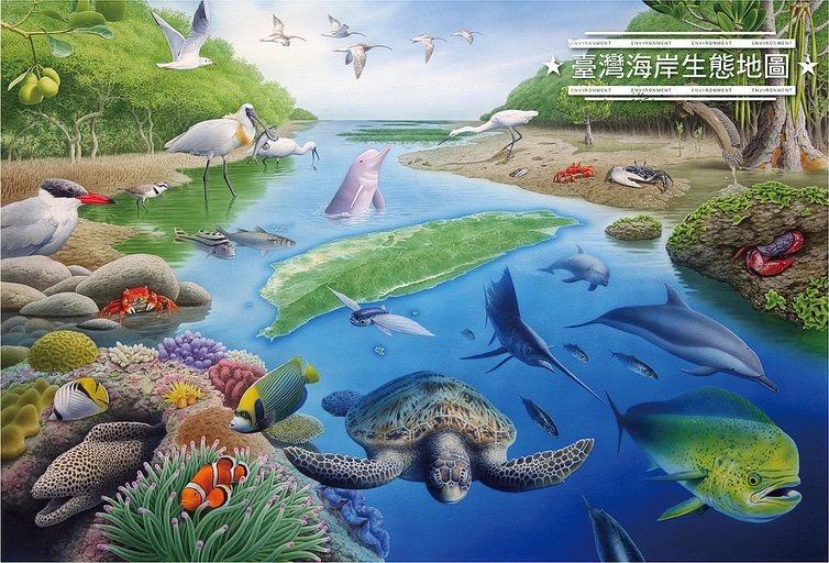 圖片提供/台灣環境資訊協會