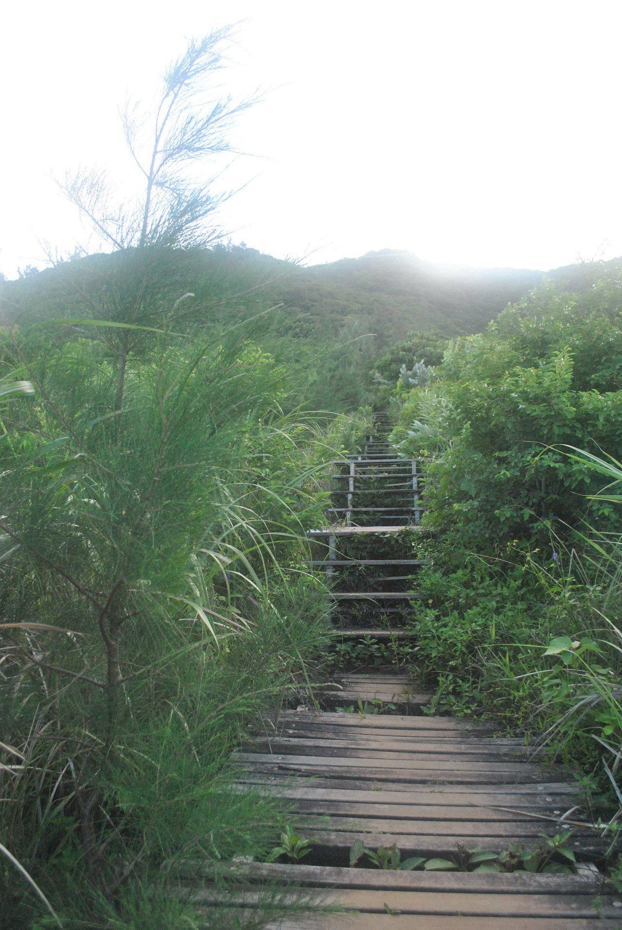 這是探涉大天池的登山步道,當地人看法兩極,認為不該興建步道。 圖/涂盛發提供