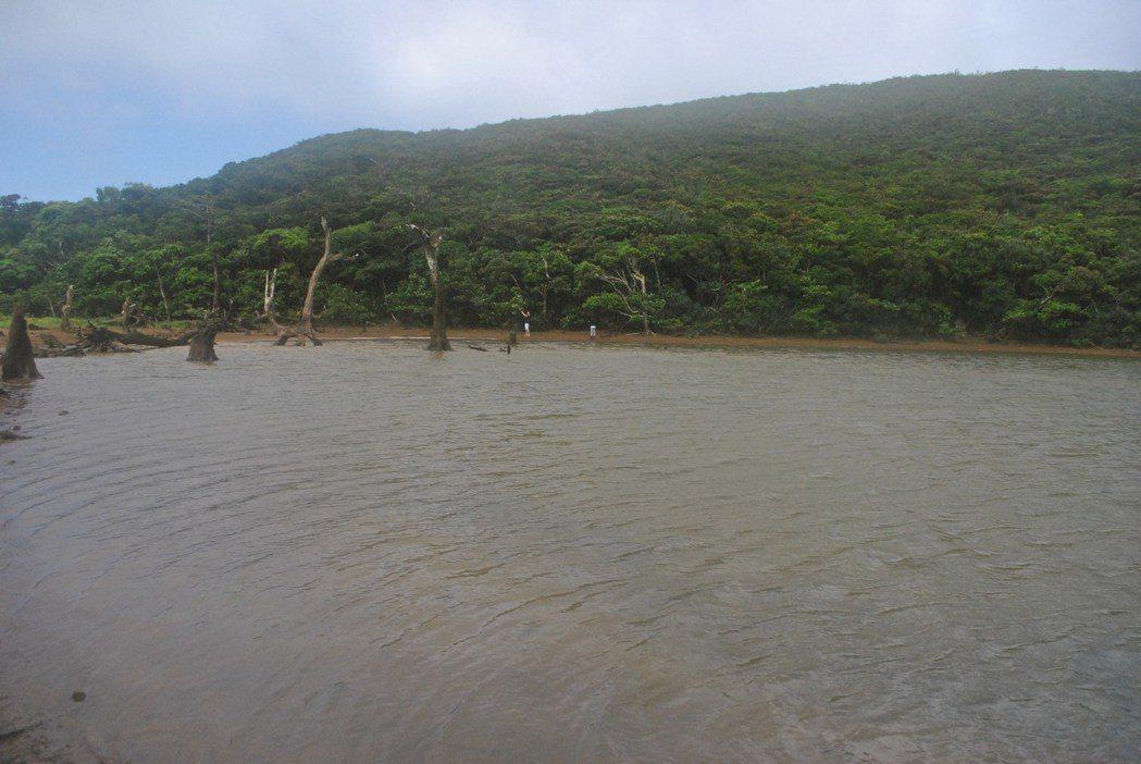 有水就美,加上池邊的枯木林,美得令人讚嘆。 圖/涂盛發提供