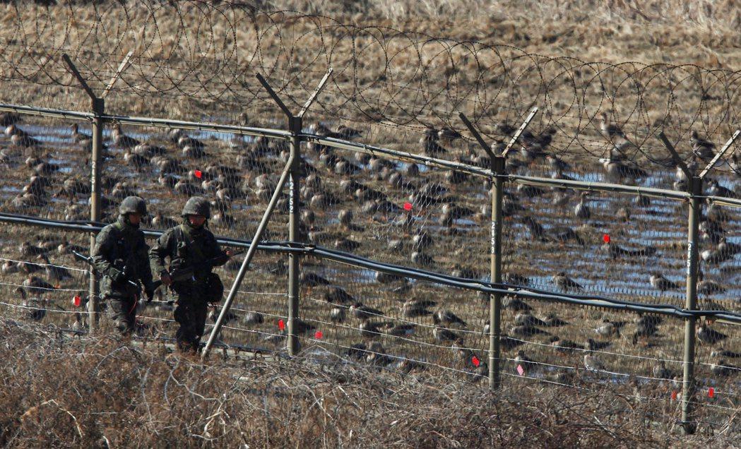南韓軍人在接近非軍事區的鐵網旁巡邏,鐵網後方有許多野鳥。 (路透)