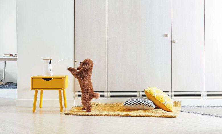 Furbo狗狗攝影更為毛孩創造從天而降的驚喜─ 丟零食,拋物角度不僅增加玩樂的趣...