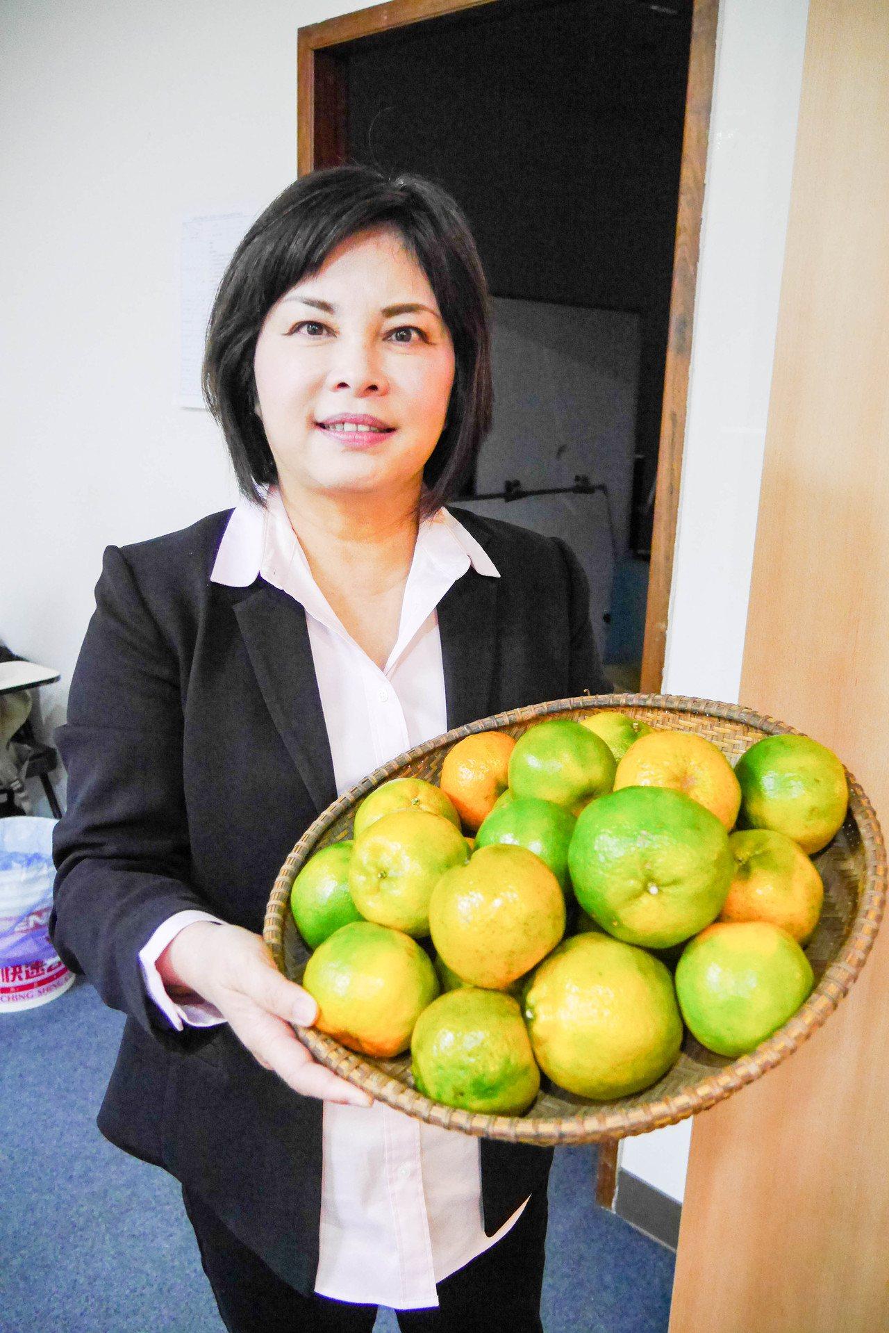 台南市議員賴惠員指出,今年雨量少,造成椪柑顆粒大小不一。記者鄭維真/攝影
