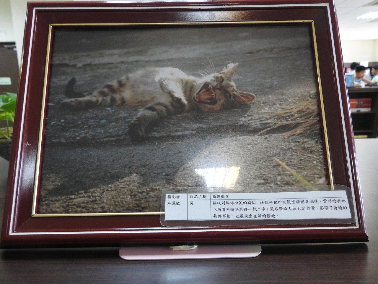 北梅國中學生以小貓當主體,透過「三分法」攝影技法,突出看似哈哈大笑的貓臉。記者賴...