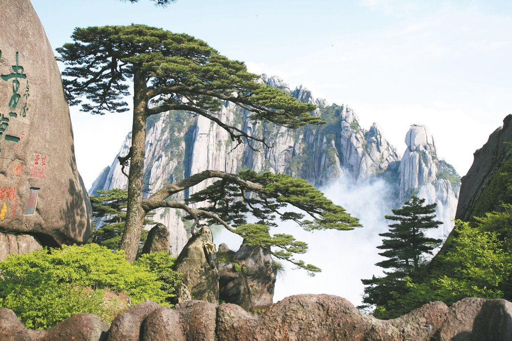 黃山最有名的迎客松