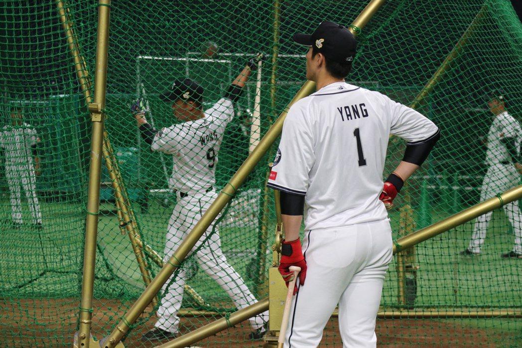 陽岱剛與王柏融能否發揮打擊威力,是中職聯隊在亞冠賽表現的關鍵。東京記者蔡佩芳攝影...