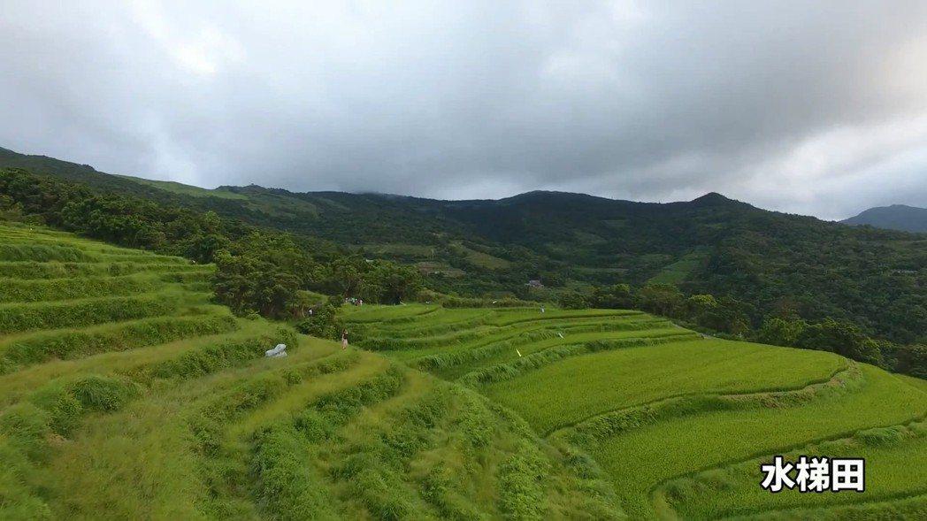 新北市觀光旅遊局曾配合貢寮小旅行拍攝水梯田景致。 圖/新北市觀旅局提供