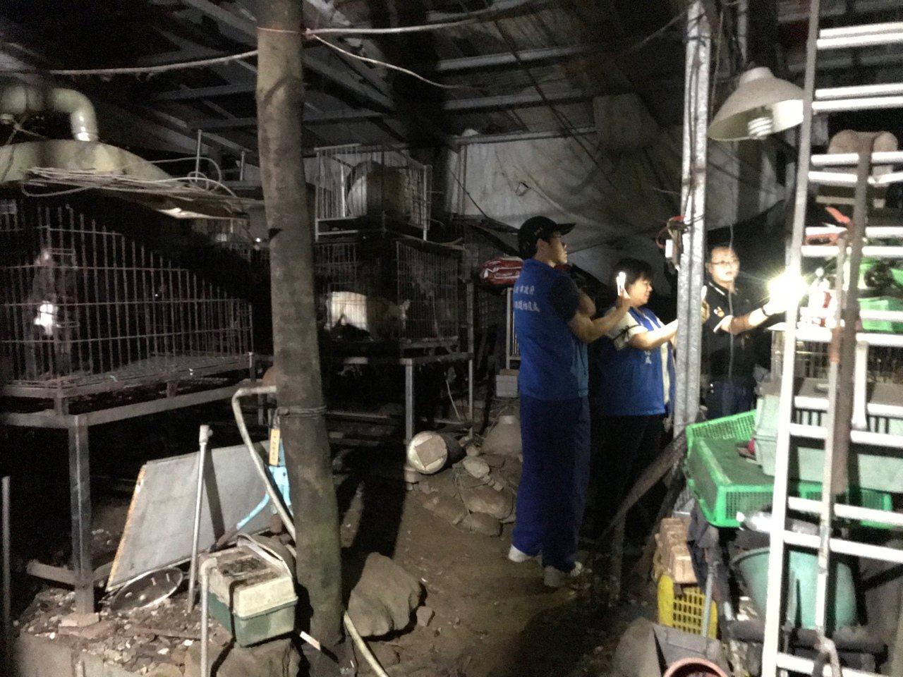 農舍內擺放許多狗籠,不同大小型狗,被長期關在籠子內,環境髒亂不堪,還有5隻狗聲帶...