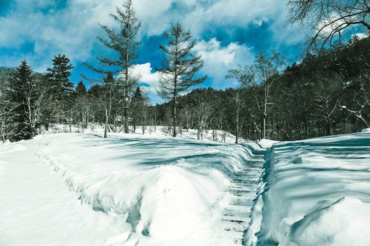 皚皚白雪之際,充滿自然原始氣息的輕井澤溫泉。 圖/聯合報有行旅提供