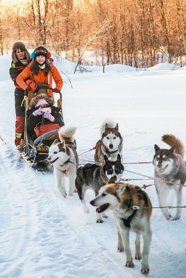 讓活潑的哈士奇犬拉著你的雪橇觀賞雪地豪景,是一大樂趣。 陳志光/攝影