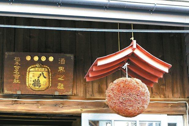 酒造以門上高高掛的「杉玉」的顏色變化來做為酒熟成的指標。 陳志光/攝影