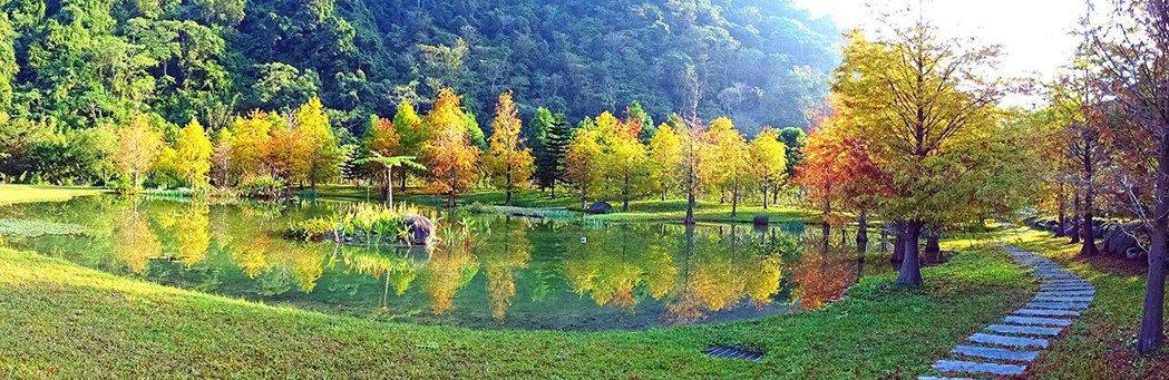 羽松湖草原是南庄雲水度假森林的第一景,許多遊客都慕名而來。 圖片提供|雲水度假森...