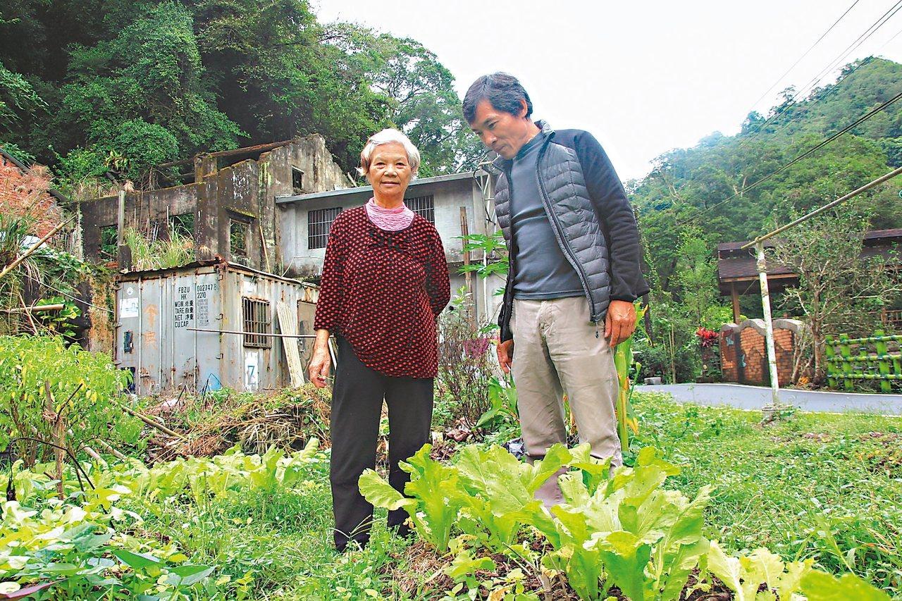 豐村莊八十歲的李四妹(左),留在老家種菜,村長林進樟常來陪她聊天。 記者郭政芬/...
