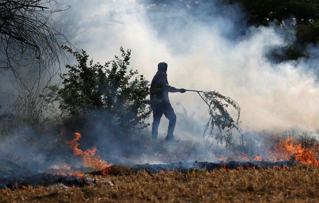 印度農民在田裡焚燒稻草。 路透