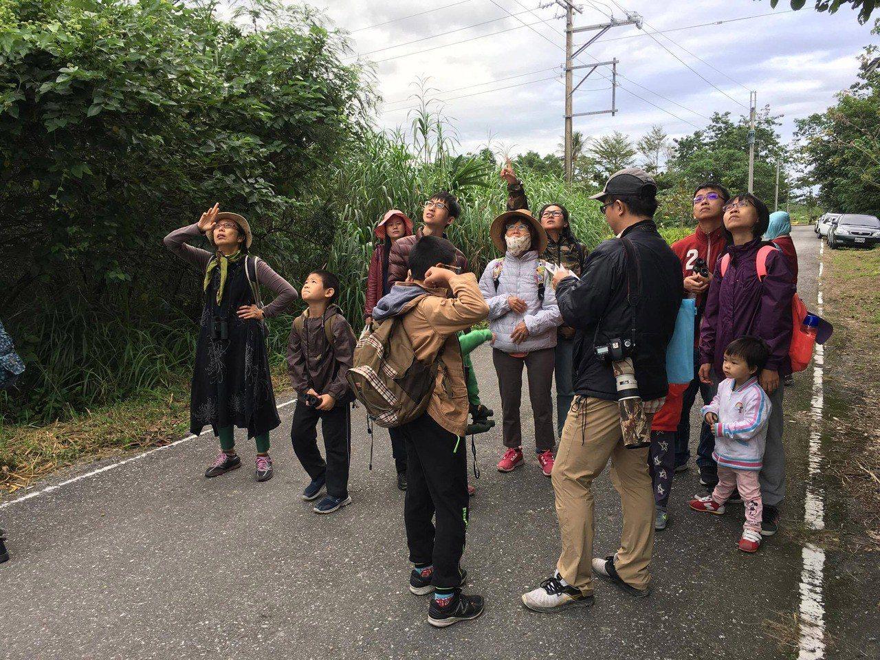 第一屆「鳥爸爸去哪兒?秋日找鳥大賽」18、19日在花蓮新城海濱、七星潭旁、美崙山...