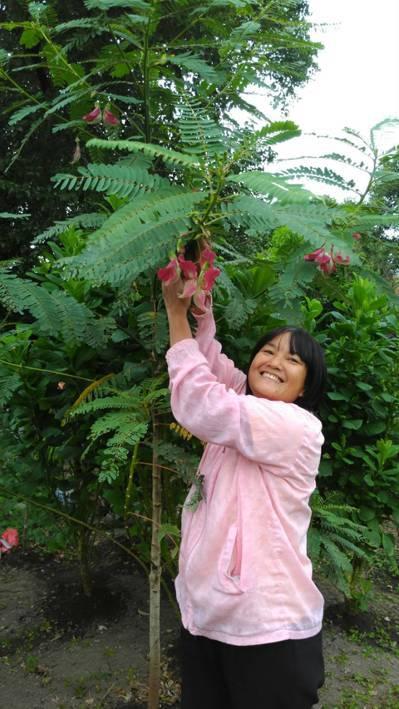 泰國新住民王平在關渡旁的小菜園中種有許多泰國家鄉的好滋味。 記者董俞佳/攝影