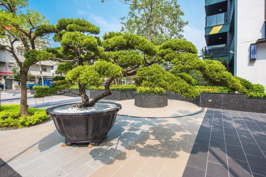 『圓山大院』千坪真柏前庭花園 實景拍攝。 圖片提供/京城建設