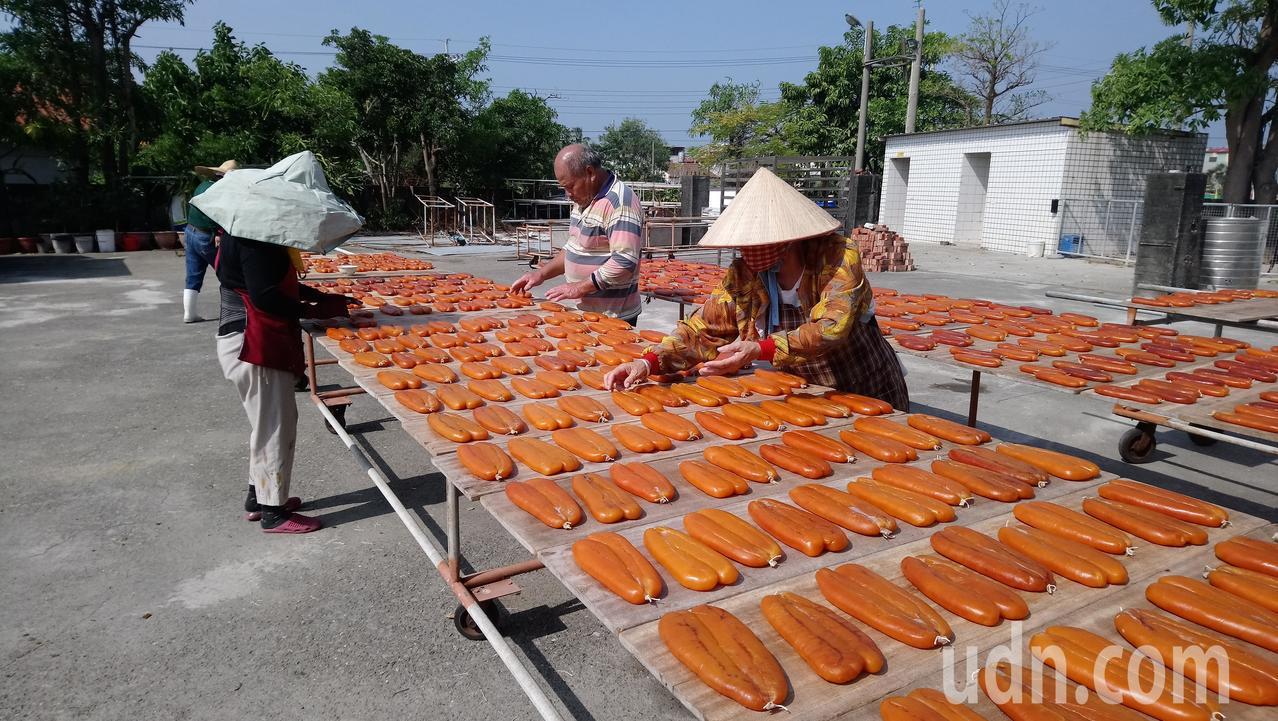 每年11月開始是雲嘉烏魚子產期,嘉義東石、布袋沿海許多加工廠外都醃製、日曬烏魚子...
