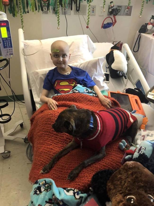 9歲癌末病童湯普森(Jacob Thompson)在各界愛心中逝世。取自/Jac...