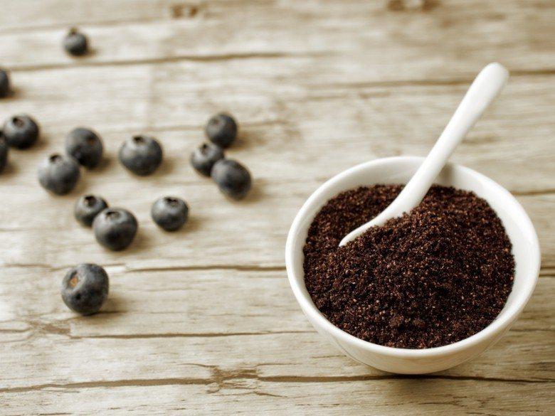 馬基莓果(Maqui Berry) 圖片提供/食力