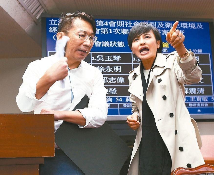 綠委邱議瑩(右)認為時力立委徐永明(左)「比大小」很沒水準。 報系資料照/記者...