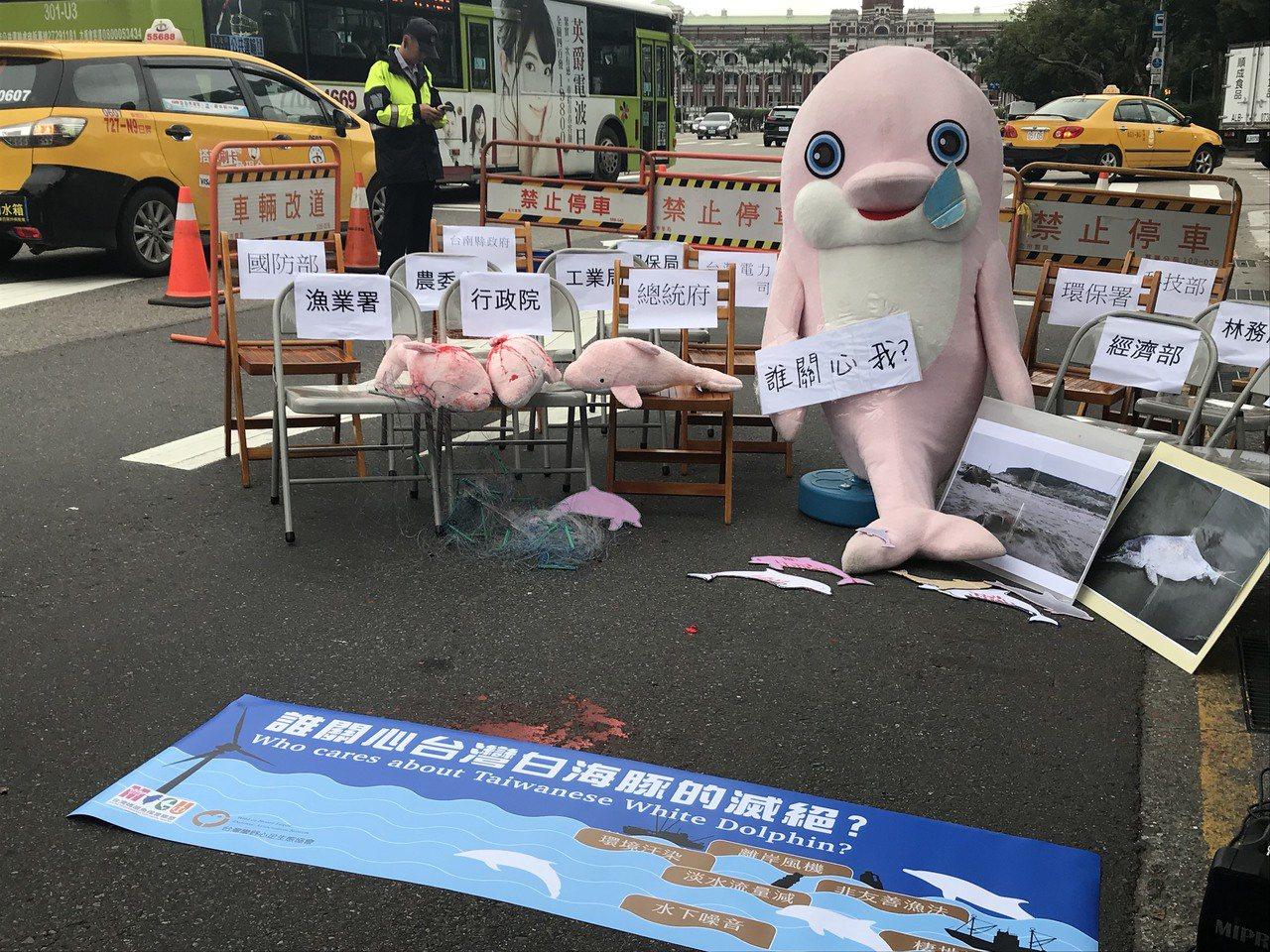環團將白海豚大型玩偶放在地上,認為沒有政府關心白海豚。記者王思慧/攝影