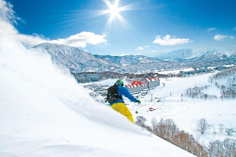 1~3月是日本滑雪旺季,包括北海道、東北、輕井澤等的的滑雪行程都受到旅客歡迎。圖/可樂旅遊提供