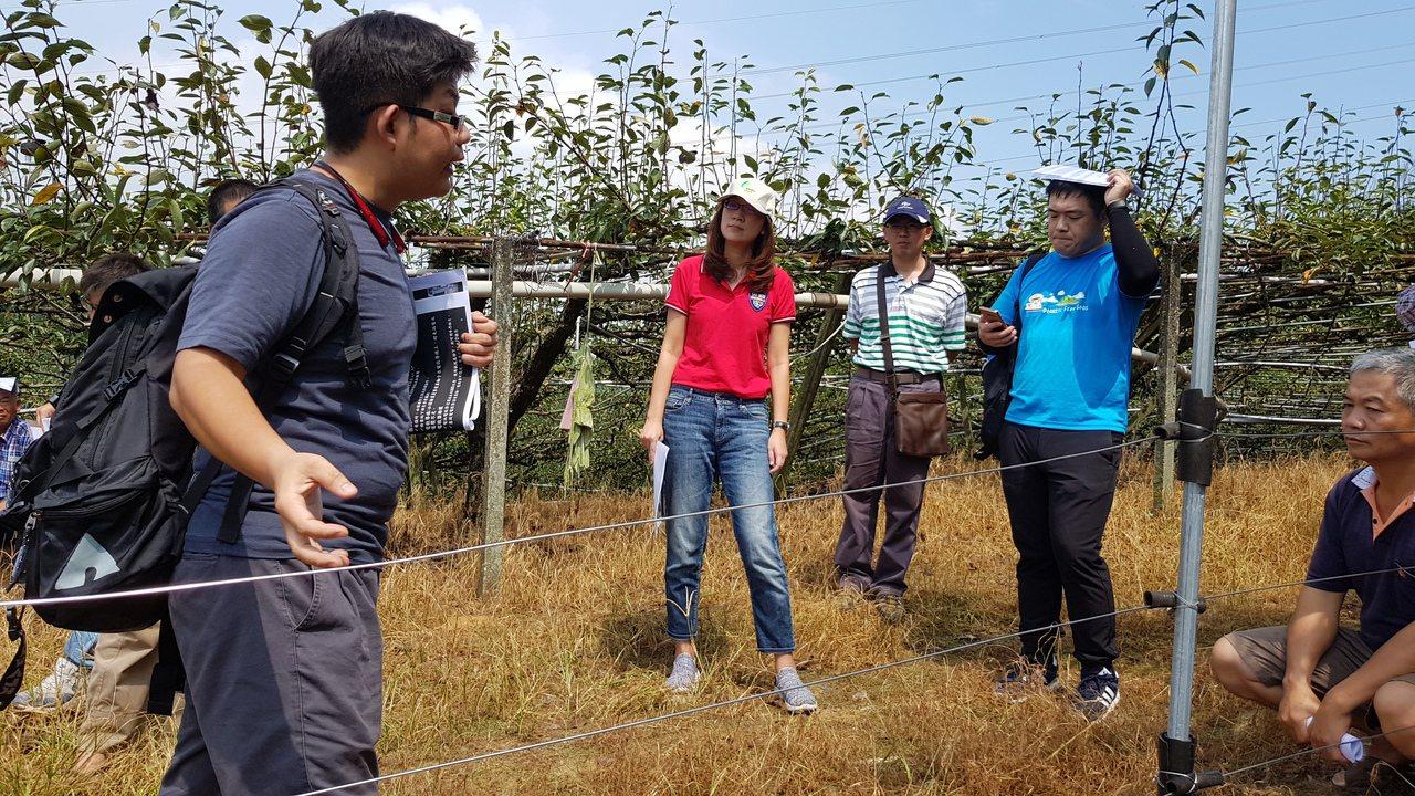 苗栗縣府今年邀請東海大學生命科學系研究團隊向農民說明架設電網的要領與防治猴害的成...