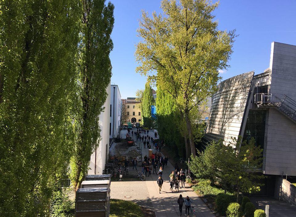一名網友遠赴德國慕尼黑工業大學深造,親戚卻笑他「畢業之後還不是去科大」,讓他感嘆...