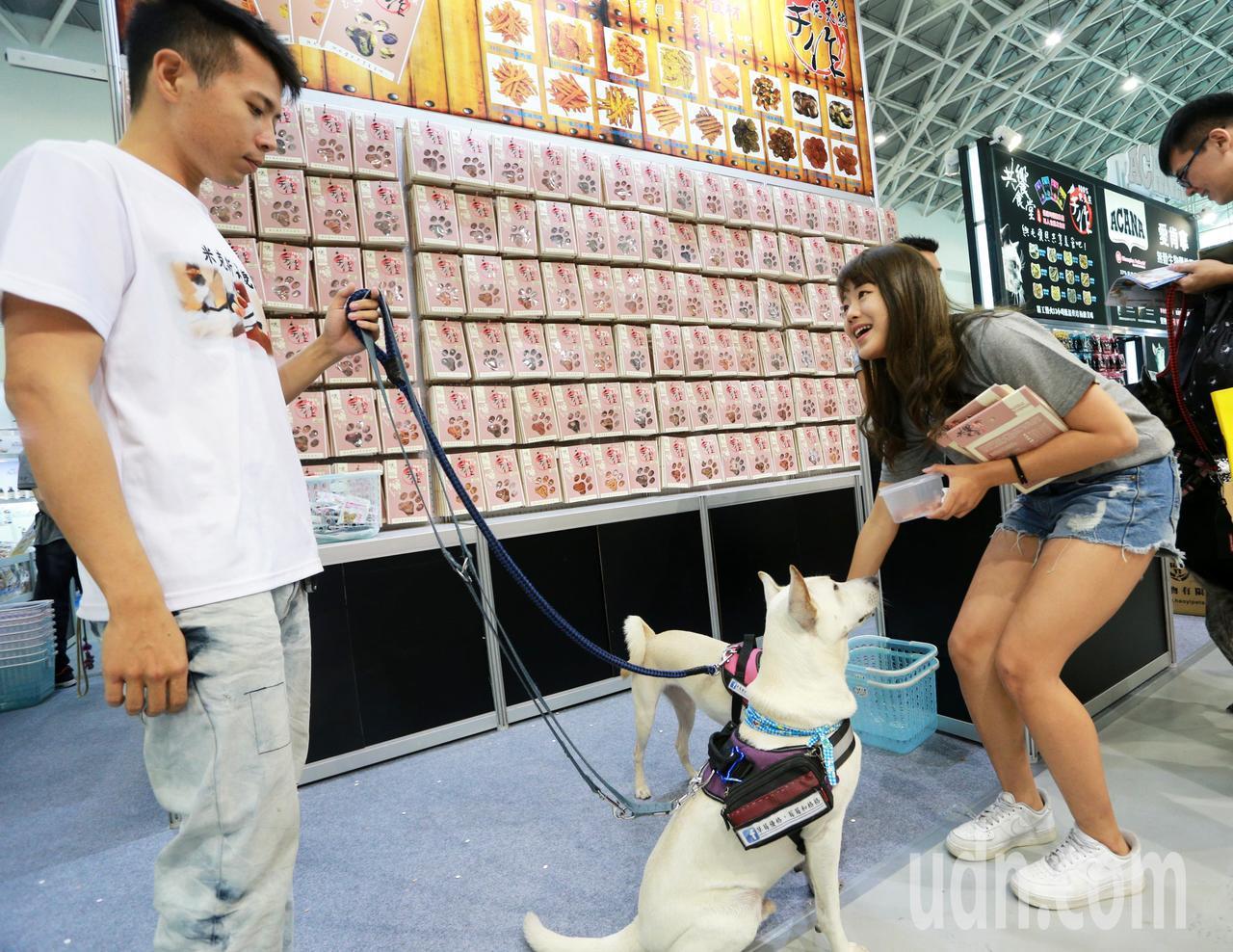 全台最大「高雄寵物用品展」今天起一連3天在高雄展覽館登場,毛孩子爸媽花錢不手軟,...