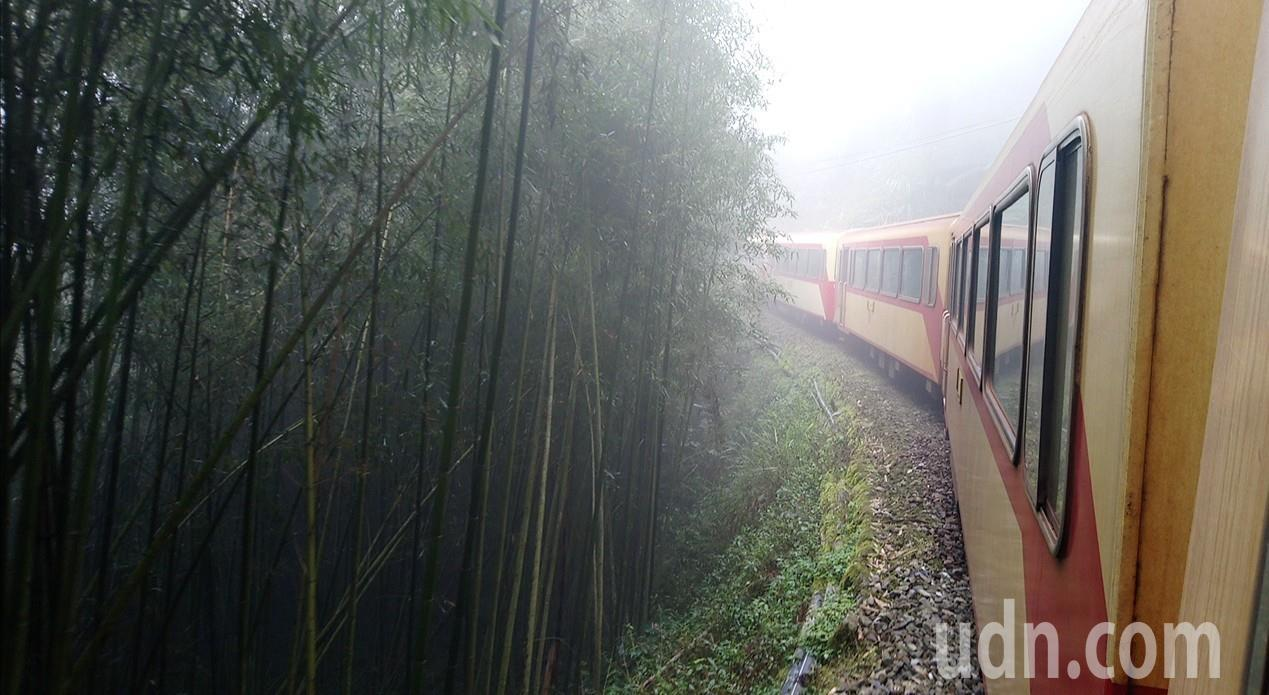 奮起湖森鐵假日加班車到十字路站,鐵路兩旁都是高山針葉、竹林。記者卜敏正/攝影