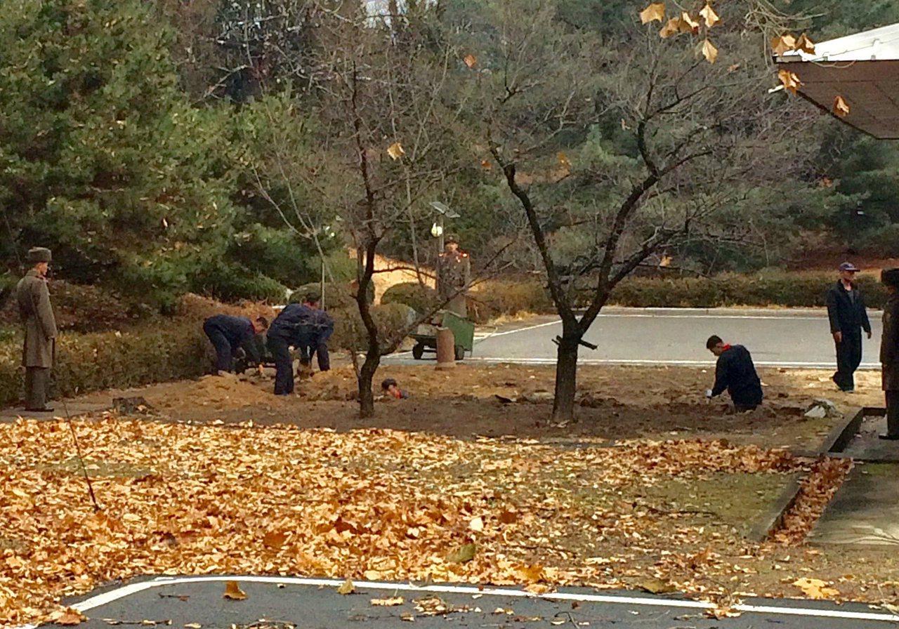 北韓軍人在叛逃士兵吉普車車輪卡住的地方挖掘深溝並種上兩棵樹。路透