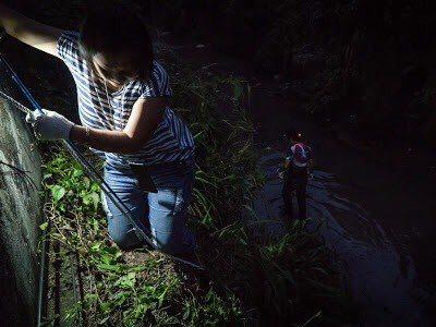 動保處人員執行動物救援工作,有時得黑夜攀搶救,充滿危險。記者陳珮琦/翻攝