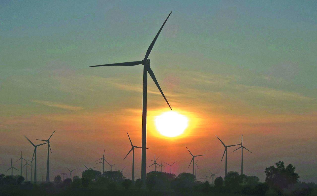 德國路德維希堡的風力發電機組。 (路透)
