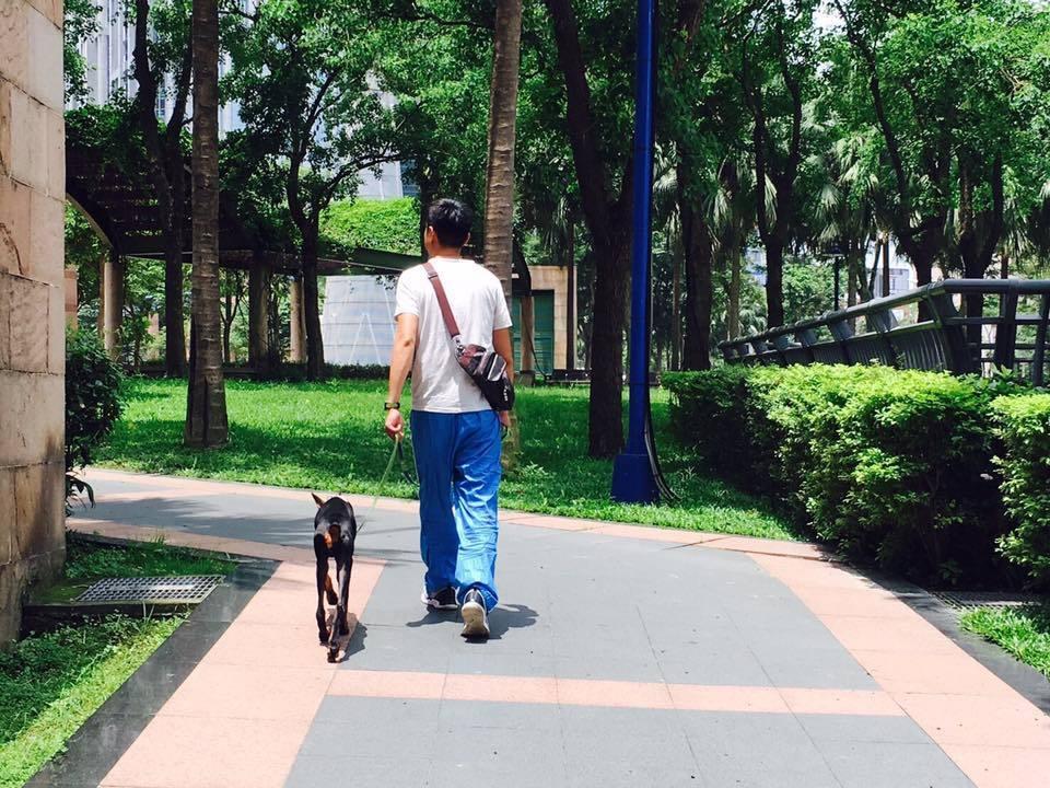 狗狗如果知道不要亂大小便、散步好好走,你就不會棄養牠的話,牠絕對不會做這些事。 ...