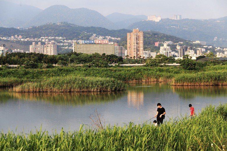 台北市政府以「生態社子島」為名,堆砌大量永續規劃設計相關詞彙,概念誤植不說,開發一個環境敏感地帶,這樣的計畫何「生態」之有? 圖/聯合報系資料照